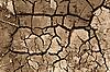 Suche tekstura gleby   Stock Foto