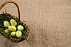 Basket with Easter eggs in grass | Stock Foto