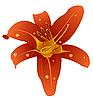 Векторный клипарт: красивый цветок орхидеи
