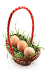 Basket with grass and eggs  | Stock Foto