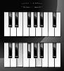 钢琴键 | 向量插图
