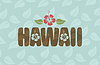 Hawaii word with hibiscus flowers and leaves