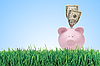 Photo 300 DPI: Piggy bank with dollars on green grass