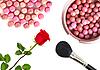 Фото 300 DPI: косметические румяна, кисть и красная роза