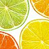 Lemon, grapefruit, orange and lime slices | Stock Foto