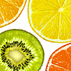 Lemon, grapefruit, orange and kiwi slices   Stock Foto