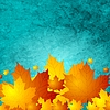 Vector clipart: Autumn maple leaves on turquoise grunge wall texture
