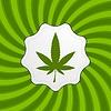Vector clipart: Green retro cannabis design element