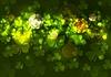 Зеленый размытым боке фон с клевером