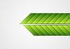 Las flechas verdes abstracto antecedentes corporativa | Ilustración vectorial
