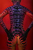 Photo 300 DPI: back of female model with body art - cat