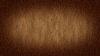 Photo 300 DPI: Wooden background