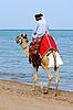 Photo 300 DPI: Arab on camel