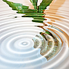 Circles on water | Stock Foto