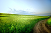 Rural landscape with road | Stock Foto