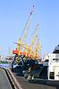 Cranes | Stock Foto