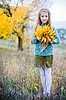 Little girl with autumn leaves | Stock Foto