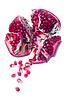 Pieces of pomegranate | 免版税照片
