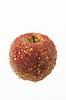 苹果装饰 | 免版税照片