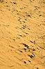 Photo 300 DPI: Yellow desert sand