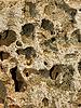 ID 3065135 | Limestone with deep holes | High resolution stock photo | CLIPARTO