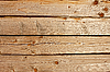 Wooden old logs   Stock Foto