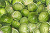 Heap of cabbage heads | Stock Foto