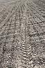 Relief of tread on soil   Stock Foto