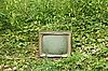 Фото 300 DPI: Старый телевизор у зеленых растений