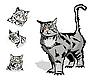 Vector clipart: cat and three heads