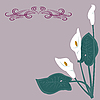 Vector clipart: White lilies