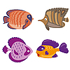 Vector clipart: tropical fish