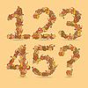 12345 Ziffern aus den herbstlichen Blättern | Stock Vektrografik