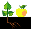 Apple and the hive | Stock Vector Graphics