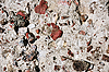Concrete texture | Stock Foto