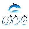 Vector clipart: Font Dolphin MNO