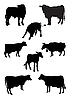 Vector clipart: Cows and bulls