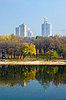 City Park   Stock Foto