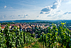 Photo 300 DPI: Vineyard and residential district in Stuttgart city center.