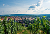 Photo 300 DPI: Vineyard and residential district in Stuttgart city center.