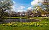 Photo 300 DPI: Dresden in spring time
