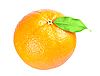 Ripe orange with leaf | Stock Foto