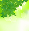 Vector clipart: natural background with green leaves