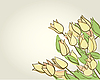 Vector clipart: floral card with tulips