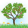 Vector clipart: cherry tree with grass and flowers