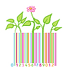 Vector clipart: flower and leaves stylized as bar code