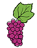 Vector clipart: grape