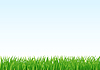 Vector clipart: grass and sky background