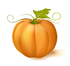 Vector clipart: pumpkin with leaf