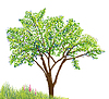 Vector clipart: tree and grass with flowers drawing